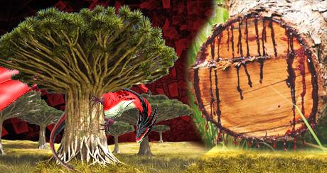 Магическая сила крови дракона — миф или реальность?